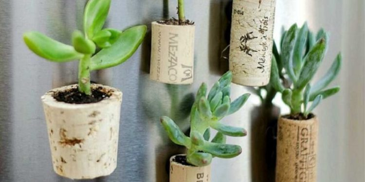 Idées récup et recyclage